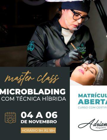 Master Class  Microblading  com Técnica Híbrida  – 04/11 à 06/11/2019